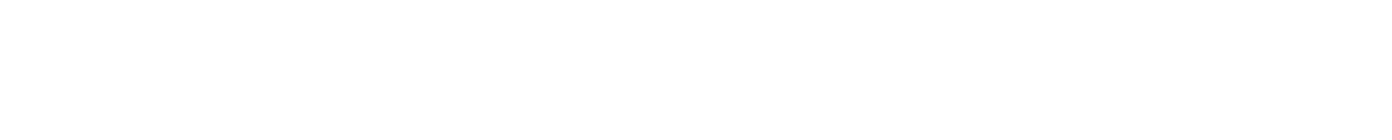Chicago Race Riot of 1919 Commemoration Project
